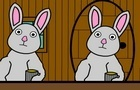 A Bunny's Story