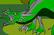 Dragon Maker 4