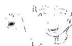 Reiko - Puppet Pest