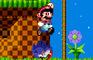 Mario VS. Sonic  (VGDC)