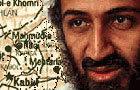 Whack bin Laden