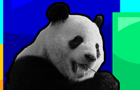 Panda Bite #1