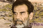 Saddam : Last Words