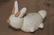 Clayground - EasterRabbit