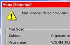 !Computer Virus!