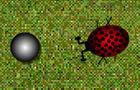 Those darn bugs!