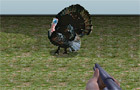 Turkey Shooter 3D