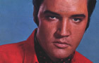 Elvis Presley: live on NG