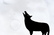 interactive background