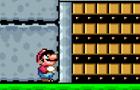 Mario Vs. Door