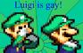 Mario Hates Fags!