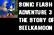 SonicFlashAdventure3 P1