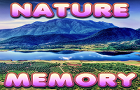 Brain Memory: Nature by TaykronGames