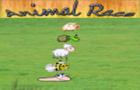 Animal Race by virtualrom