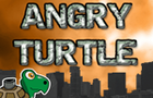 Angry Turtle by siriusdave