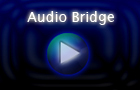 NG Audio Bridge