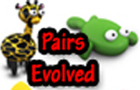 Pairs Evolved Time Attack