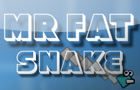 MR Fat Snake