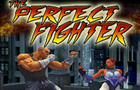 The Perfect Fighter by flashkof
