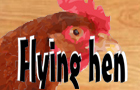 Flying Hen