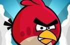 Angry Birds by nutboxz
