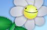 A Flower Joke!