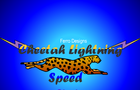 Cheetah Lightning Speed