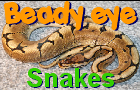 Beady Eye:Snakes by ColoGames