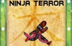 Ninja Terror