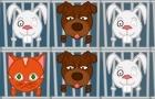 1001 Caged Animals