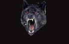 Lazar Wolf