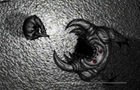 Grayscale Nightmares by 4anGames