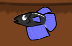 Fighter Fish by Coyfish