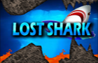 Lost Shark by adjua