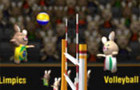 2012 BunnyLimpics Volleyb