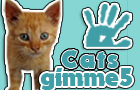 gimme5 - cats