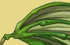 HTD: Dragon Skin Wing