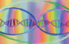 SS ~ DNA Activation by JordanD