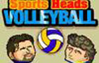 Sports Heads: Volleyball by mousebreaker2009