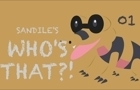 Sandile's Who's That? by Sandile