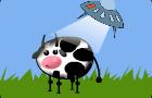 UFO like cows
