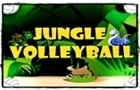 Jungle Volleyball 2Player by Anubhav21Sharma