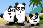 3 Pandas by FlashTeam777