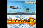 Flyvoidez
