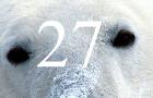 Ffiv: Polar Bears