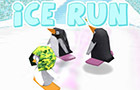 Ice Run by rumblesushi