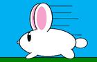 bunnyrun!!!!