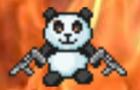 Panda slaughter