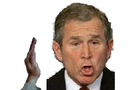 Slap George Bush