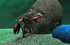 Underwater 3D Model